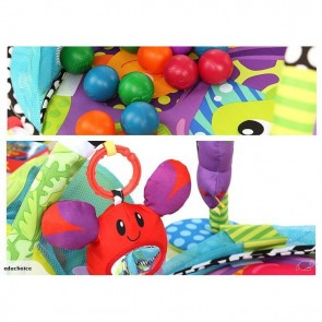 iBaby Activity Gym and Ball Pit play mat